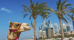 जानिये, भारतीयों के लिए क्यों है, पसंदीदा रियल एस्टेट केन्द्र दुबई