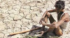 किसानों की खुदकुशी के साल भर में 40 प्रतिशत मामले बढ़े
