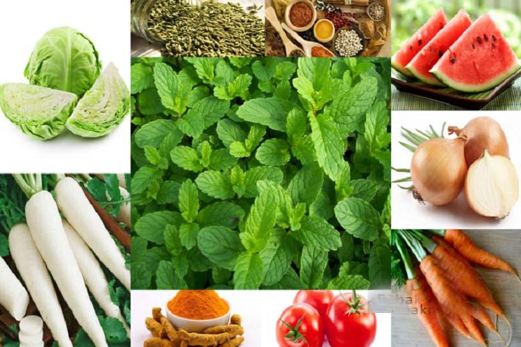 vegitabels