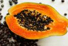 कैंसर और किडनी जैसी बीमारियों को दूर करते हैं इसके बीज