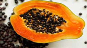 कैंसर और किडनी जैसी बीमारियों को दूर करते हैं पपीते के बीज