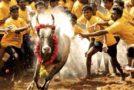 जलीकट्टू पर प्रदर्शन जारी, मुंबई में समर्थन में उतरे लोग