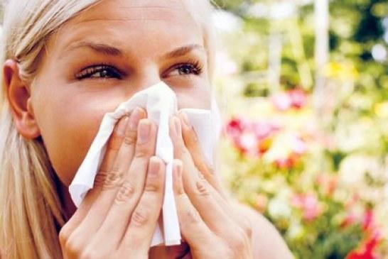 alergie-546x365