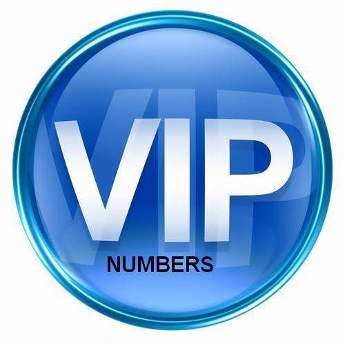 vip-number-nat